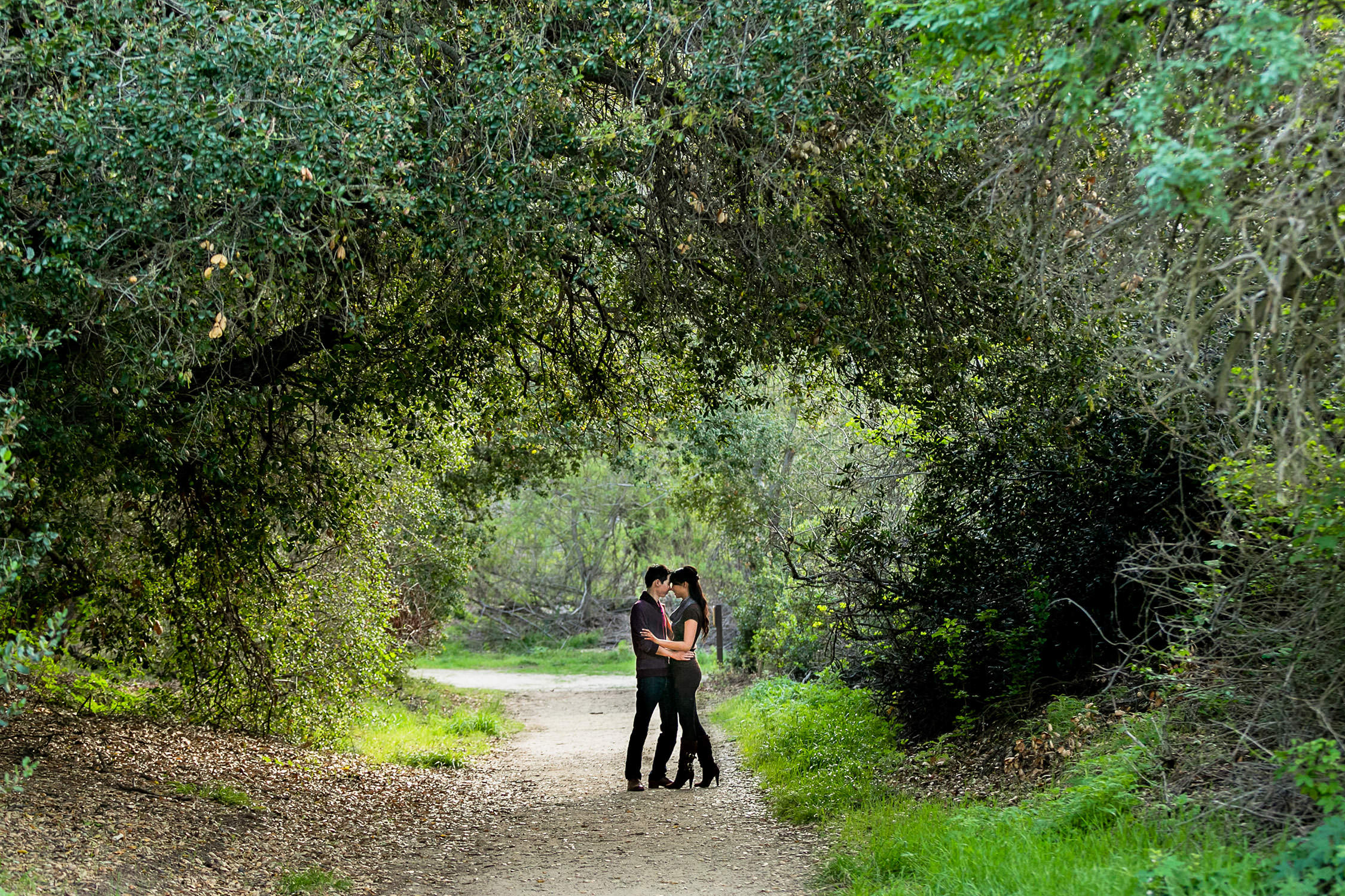 Engagement Session in the woods at Oak Canyon Nature Center in Anaheim Hills Southern California